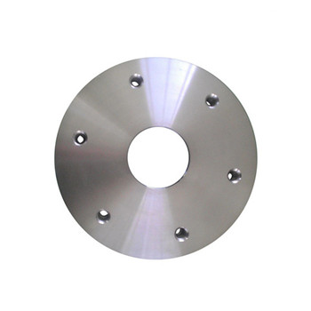 Wn Stainless Steel Weld Neck Flange (A182 F304H, F316H, F317)