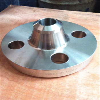Amse B16.5 Wn Duplex Steel 304/F61/F53/F55/2205/2507 /2520/317L /304L, /316, /316L Steel Forged Welded Flange