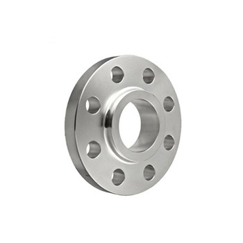 ASTM A182 253 Ma Stainless Steel Flanges