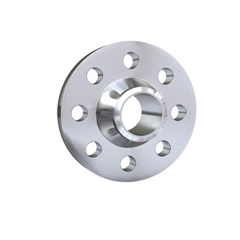 China Hot Sale Stainless Steel Weld Neck Flange