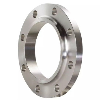 Alloy Steel Forging Tube Pipe Ring Flanges