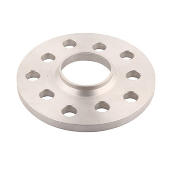 ASTM A182 F304 F316 Stainless Steel Forged Flange