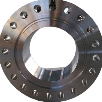 Stainless Steel Forged Flange/Pipe Forging Flange, Steel Flange Flange