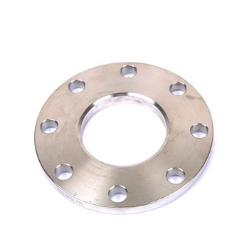Stainless Steel Ss304/Ss316 Flange