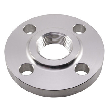 200nb Cl150 RF A105 Carbon Steel Blind Flange