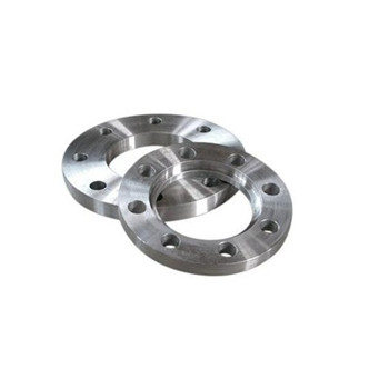 Forged Stainless Steel ASTM A182 F316L Cl150 Orifice Flange