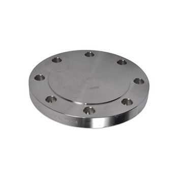 Pressure Vessel Stainless Steel Flanges