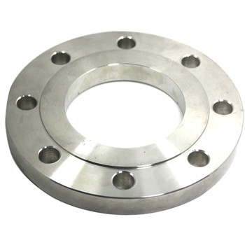 Duplex Stainless Steel Pipe Fitting Forfged Welding Neck Flange