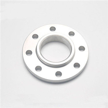 Valve Stainless Steel Flanges