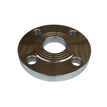 SA182 F316ti F304 F316 Stainless Steel Forged Flanges