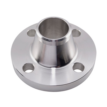 Forged Stainless Steel Slip on Flange (YZF-E466)