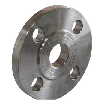 Forged Stainless Steel Sanitary Blind Flange