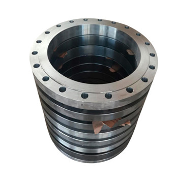 SA182 F51 Flange for Heat Exchanger
