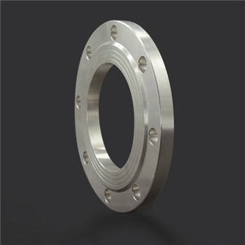 Stainless Steel Cast Welding Forged Carbon Steel Plate FF Blind Flange