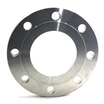 OEM Forged Stainless Steel Blind Flange with CNC Machining