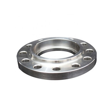 Hydraulic Breaker Pipeline Flange Plug Forged Stainless Steel Flange Plate with Good Quality From China
