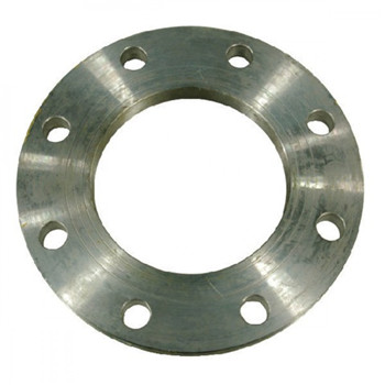 F304L Steel Welding Neck Forging Flange