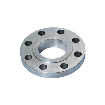 ANSI/DIN/GB Welding Neck Flange Stainless Steel Pipe Blank Flange