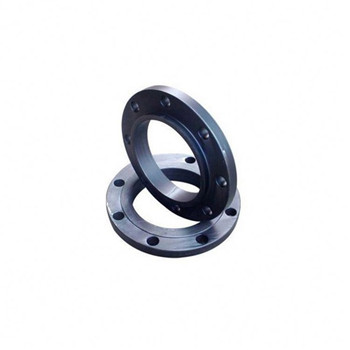 Forged SUS304 Stainless Steel Flange