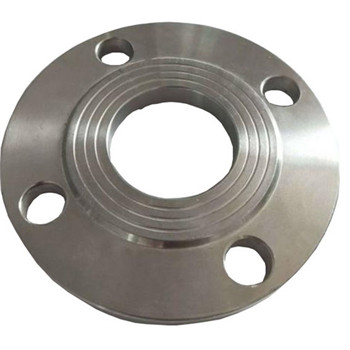 ASTM A182 F317/317L Forged Stainless Steel Flanges